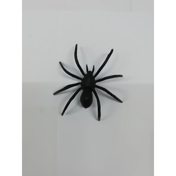 Αράχνη ψεύτικη